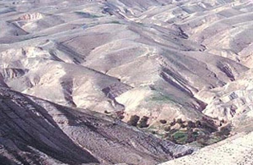 The desert (photo credit: SHMUEL BAR-AM)