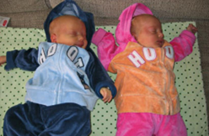twins 248.88 (photo credit: )