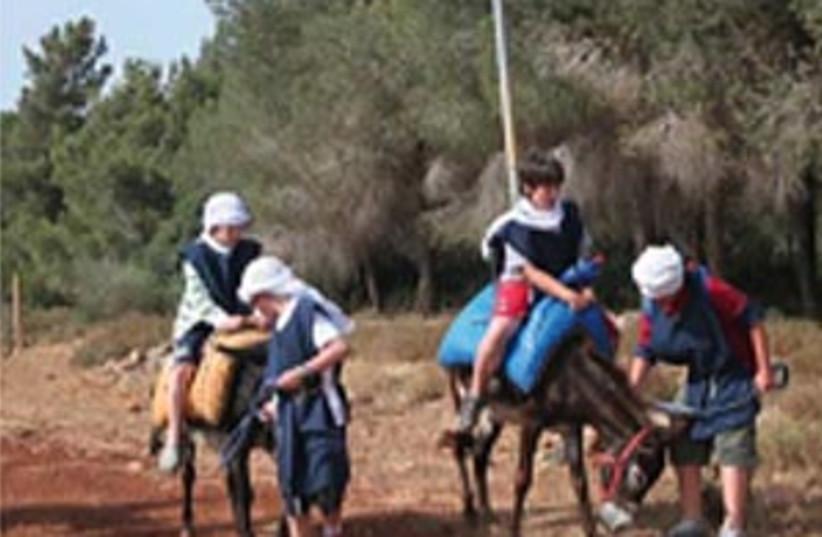 Donkey trip (photo credit: SHMUEL BAR-AM)