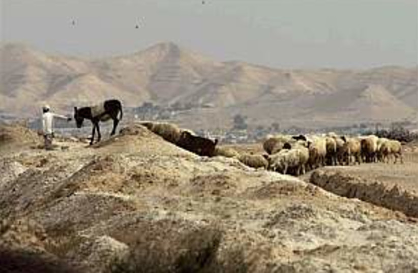 beduin shepherd 298.88 (photo credit: AP)