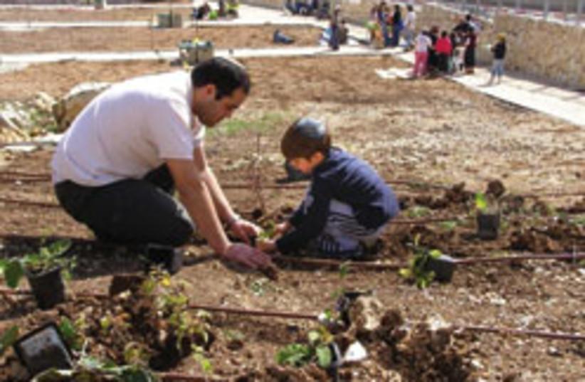 gardeners 248.88 (photo credit: )