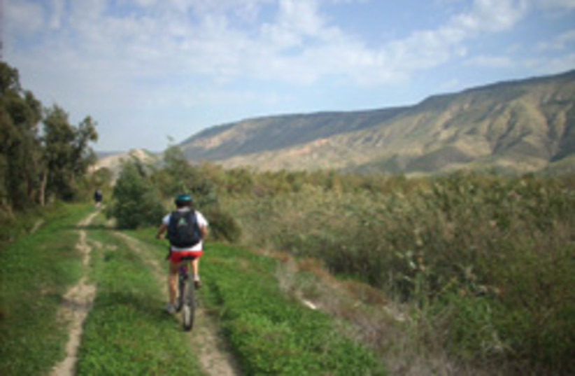 biking kinneret 248.88 (photo credit: Melanie Lidman)