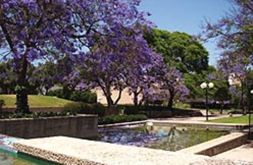 Kfar Saba park 248.88 (photo credit: Levg)