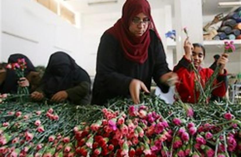 Palestinian women gaza 248.88 (photo credit: AP)