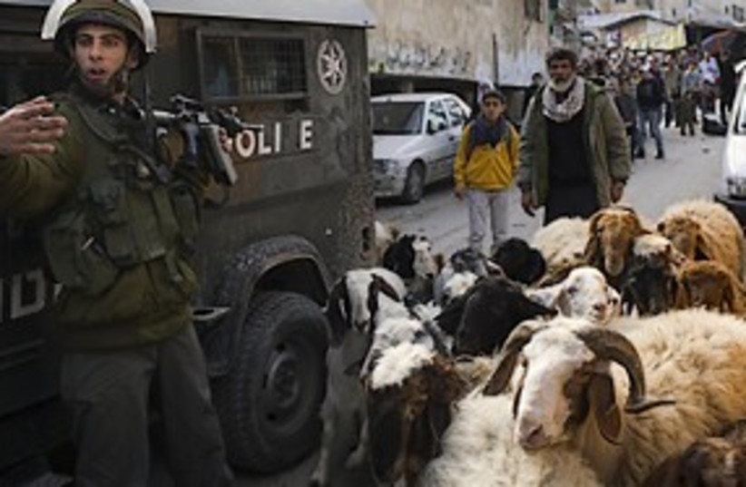 shuafat riots goats 311 (photo credit: AP)