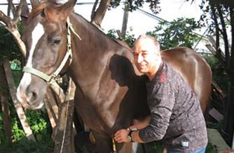 man and horse 311 (photo credit: Courtesy)