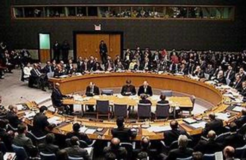 UNSC 311 (photo credit: AP)