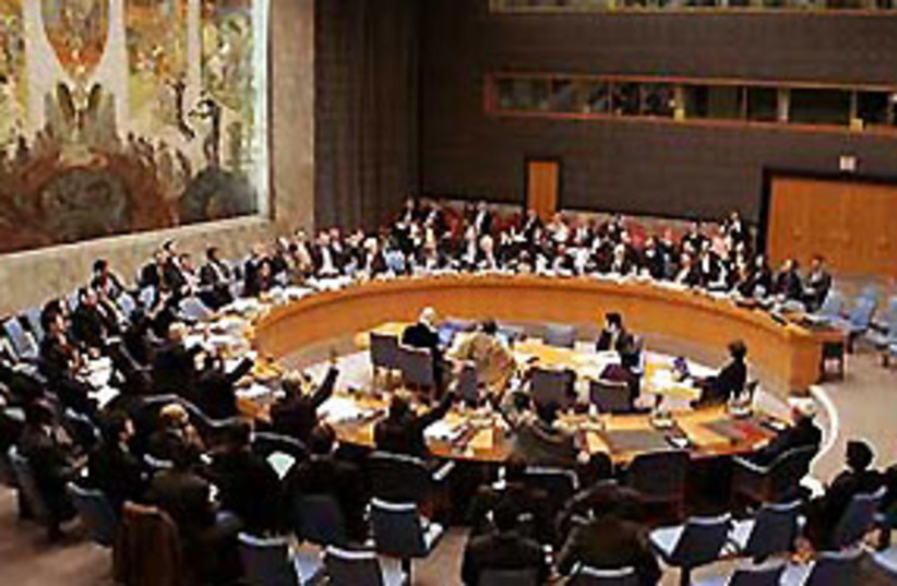 UN Security Council 311 (photo credit: courtesy)
