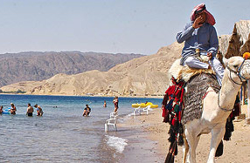 sinai beach camel 311 (photo credit: Ariel Jerozolimski)