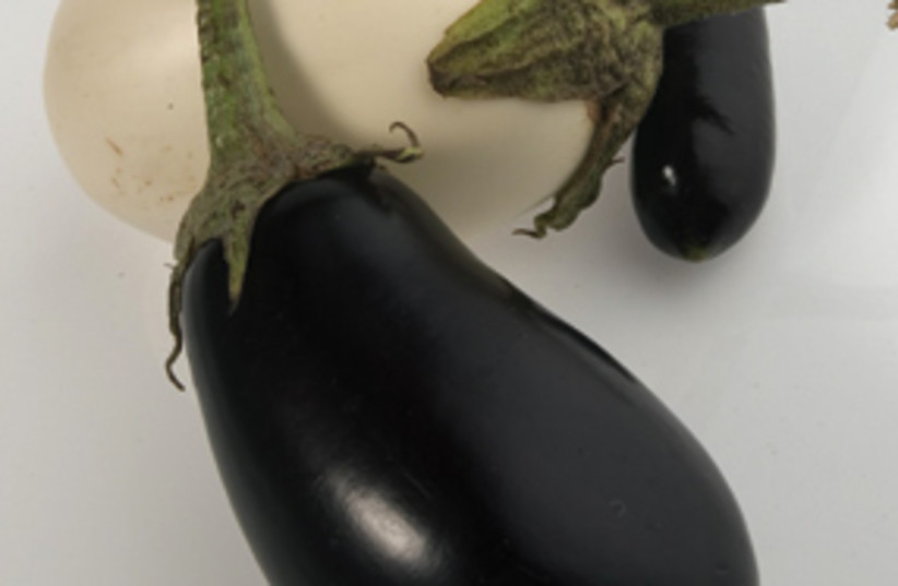 eggplants 311 (photo credit: John Dziekan/ Chicago Tribune/MCT)