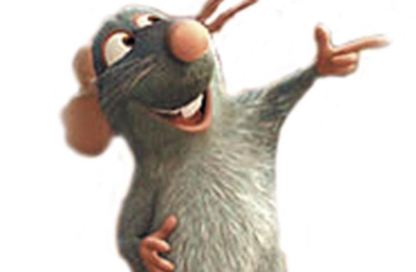 rat film 298.88 (photo credit: Courtesy)