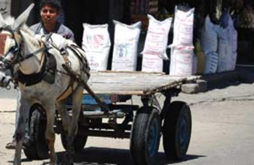 palestinian poverty 311 (photo credit: AP)