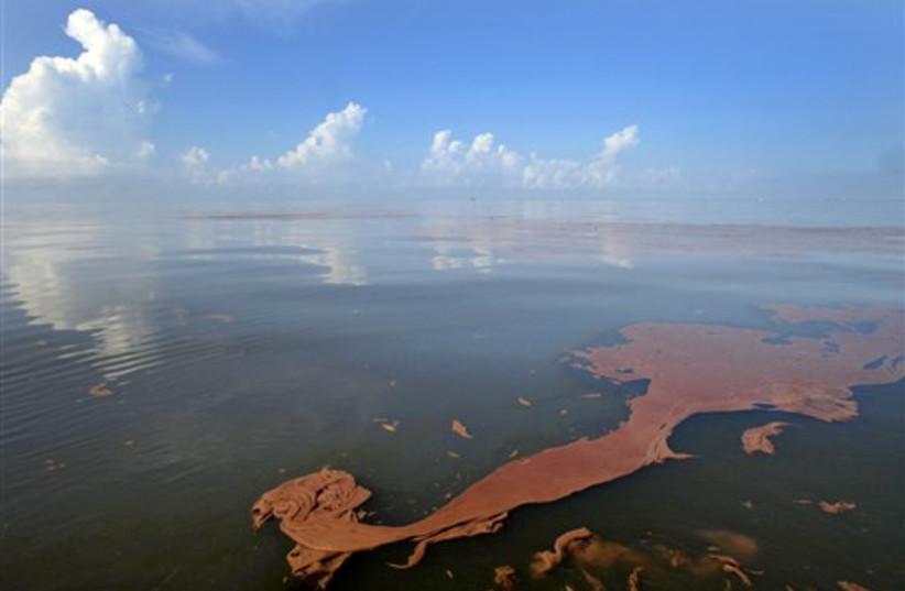 Gulf oil spill (photo credit: AP)