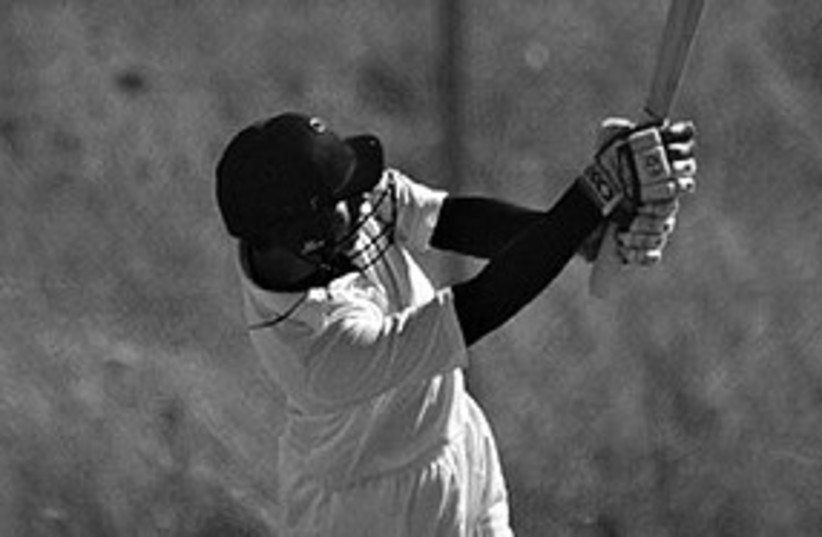 Cricket 311 (photo credit: Akhil Rajput)