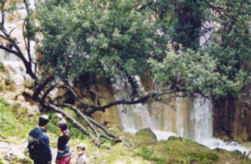 galilee waterfall 311 (photo credit: Courtesy)