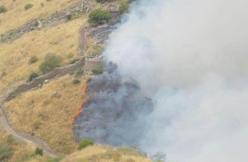 Gamla fire 311 (photo credit: Osnat Eitan)