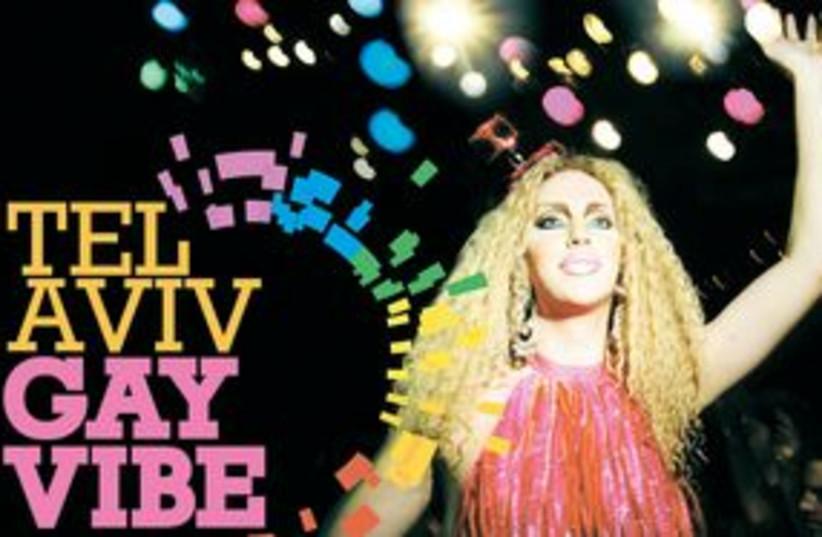 Gay Vibe 311 (photo credit: Courtesy)