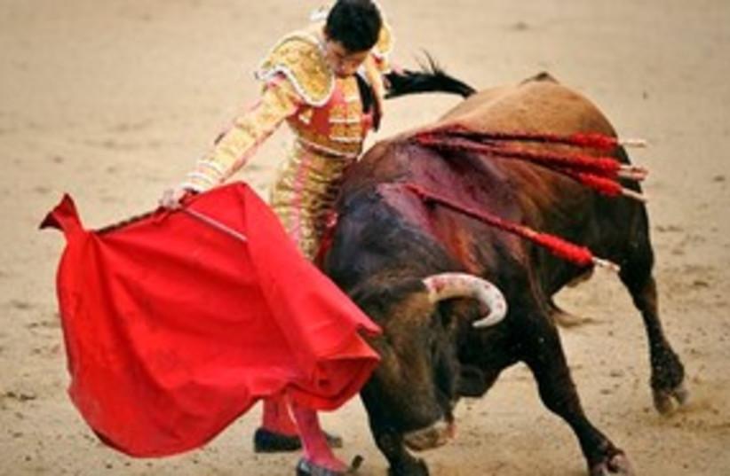 Bullfighting 311 (photo credit: Associated Press)