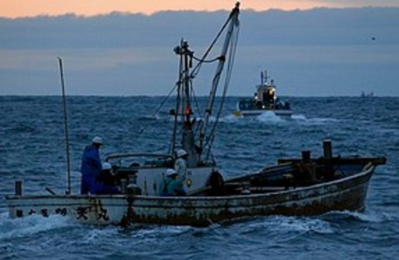 Fishing boat (photo credit: Associated Press)