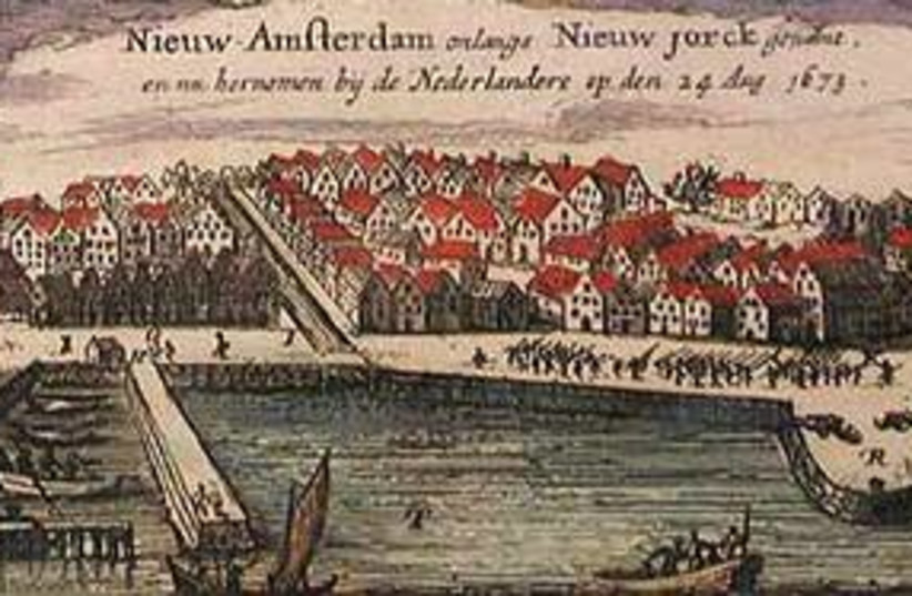 new amsterdam311 (photo credit: Courtesy)