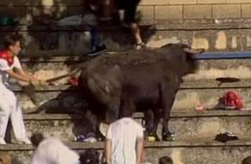 311_bullfight (photo credit: Associated Press)