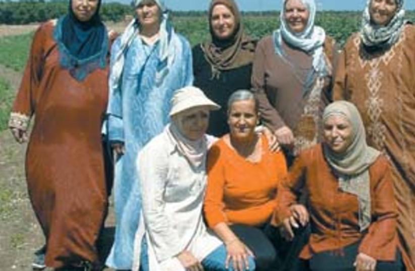 women land 88 298 (photo credit: Lydia Aisenberg)