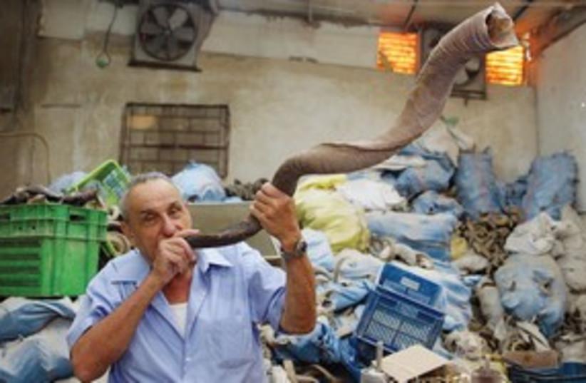 shofar311 (photo credit: Marc Israel Sellem)