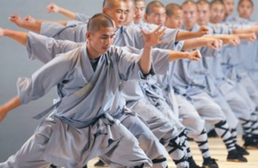 Martial Artists 311 (photo credit: courtesy)