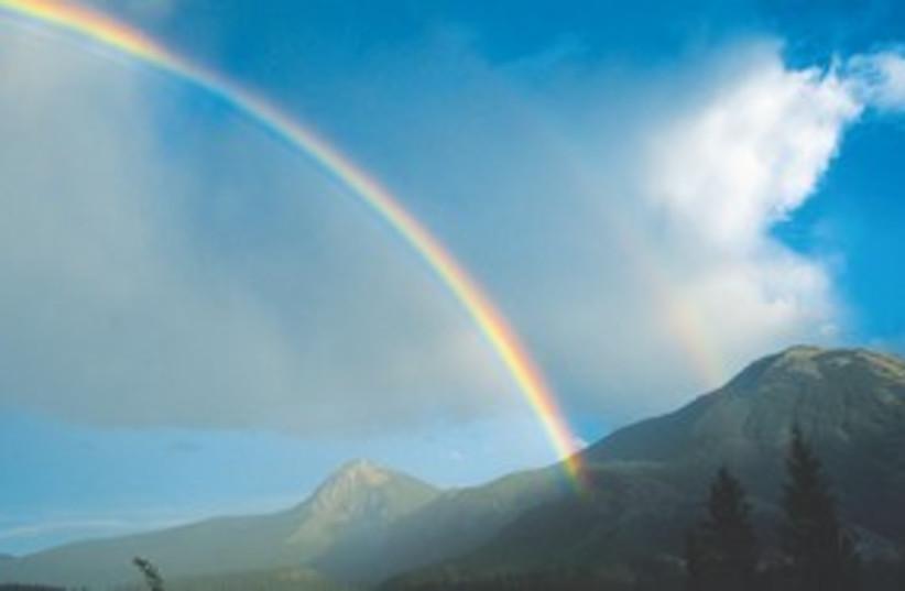 Rainbow 311 (photo credit: Courtesy)