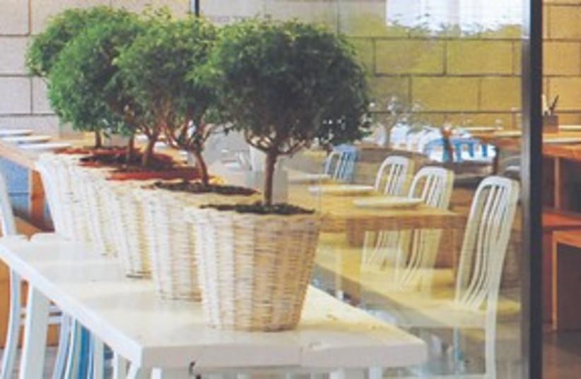 Hadar Ha'ochel 311 (photo credit: Courtesy)