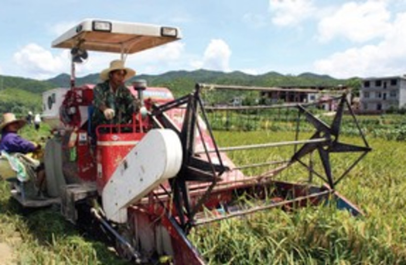 Chinese agriculture 311 (photo credit: Associated Press)