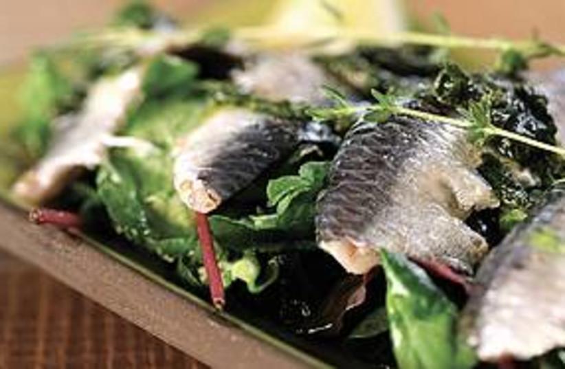 Fish carpaccio (photo credit: Courtesy)