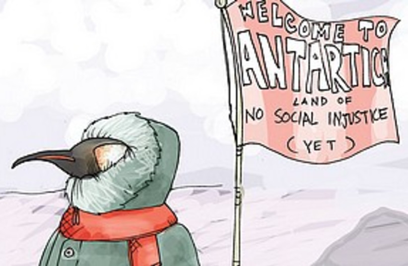 Penguin in the antartic (photo credit: Illustration)