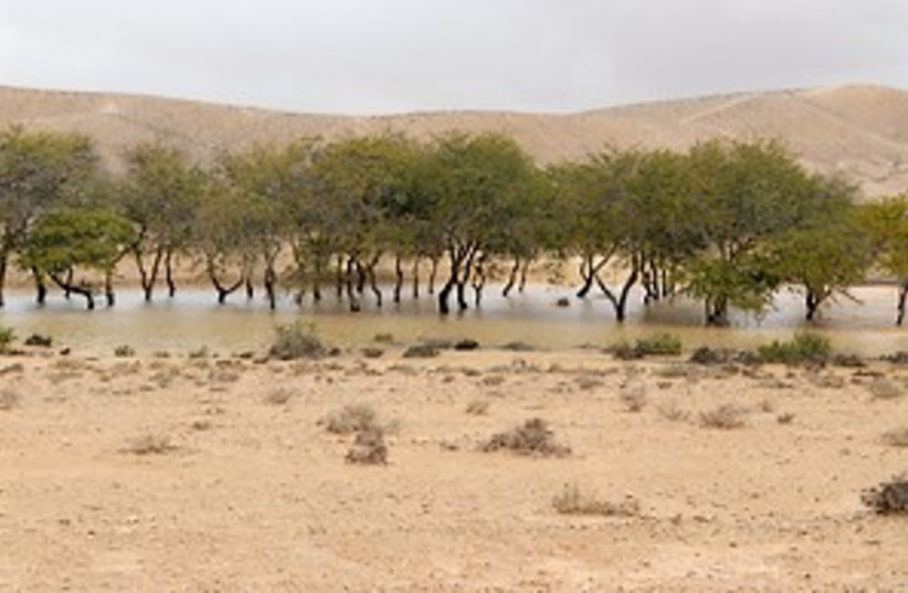 negev water 298 (photo credit: Courtesy)