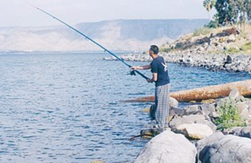 kinneret fishing (photo credit: Ariel Jerozolimski)