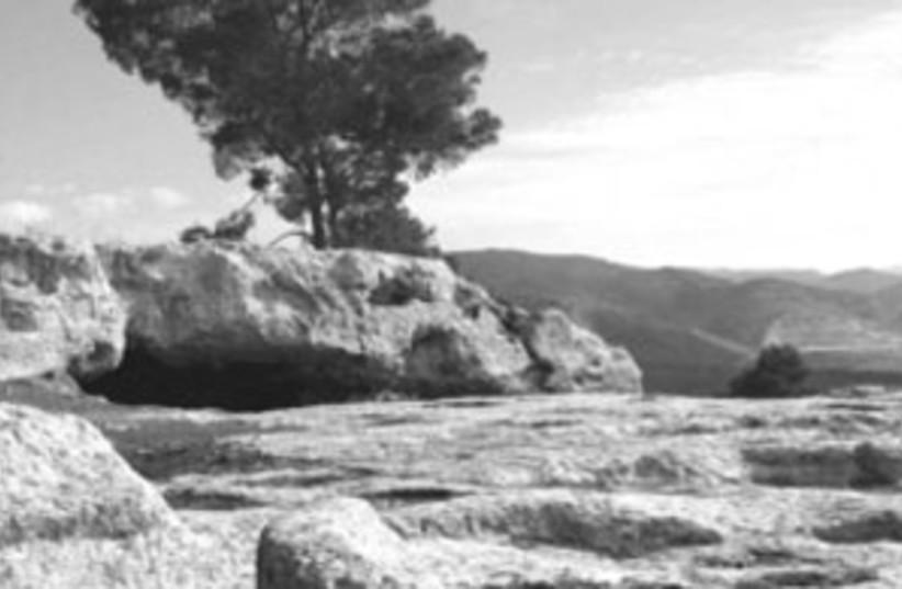 Judean Hills 2 (photo credit: SHMUEL BAR-AM )
