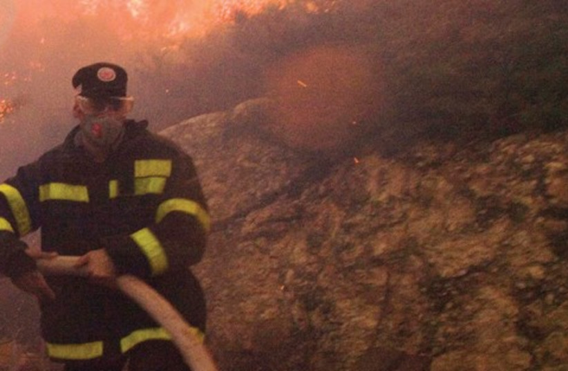 Carmel Fire (photo credit: Associated Press)