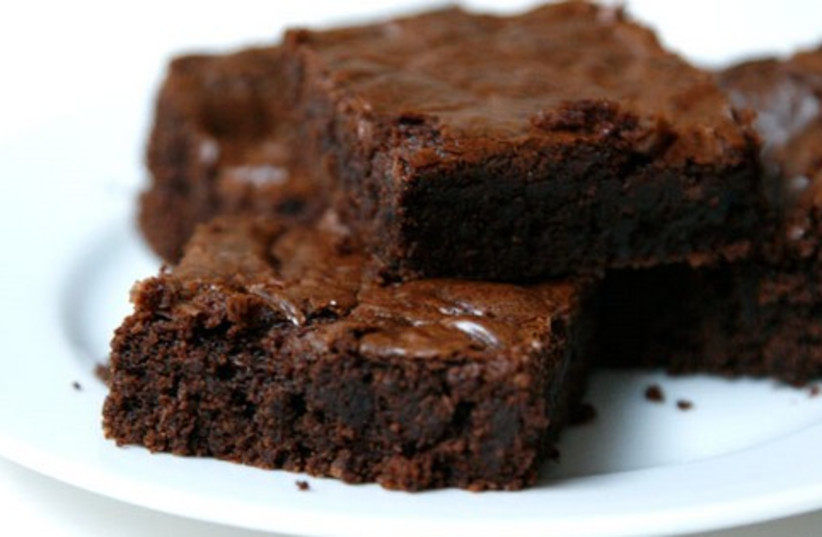 Brownie (photo credit: Courtesy)