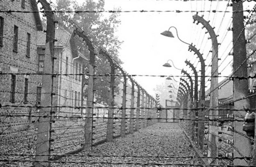 Aushwitz 521 (photo credit: Frank D. Smith)