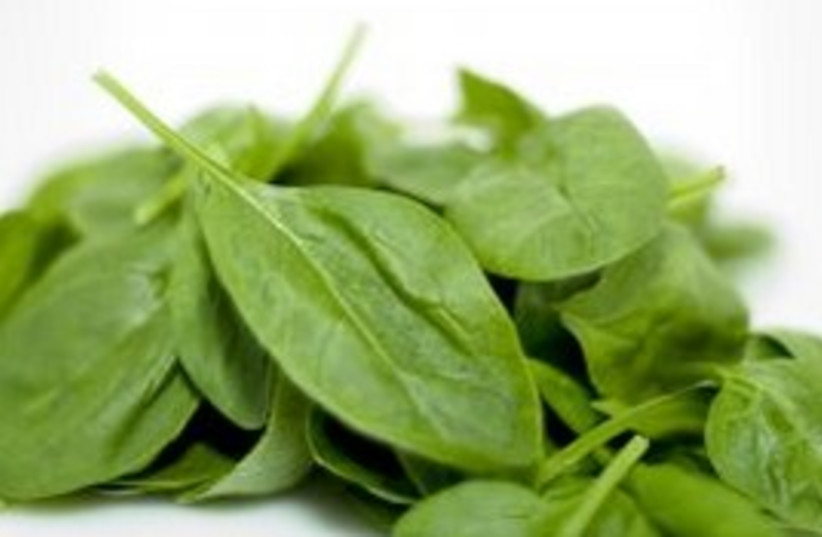 Spinach (photo credit: Courtesy)