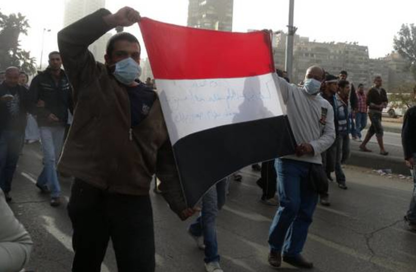 Egyptian protesters hold a flag