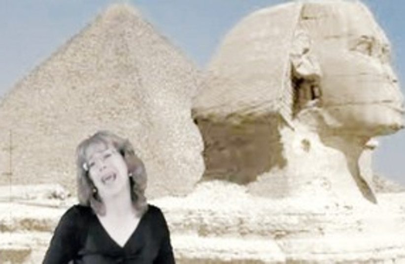Sandy Cash Egyptian Revolution Blues 311 (photo credit: Courtesy)