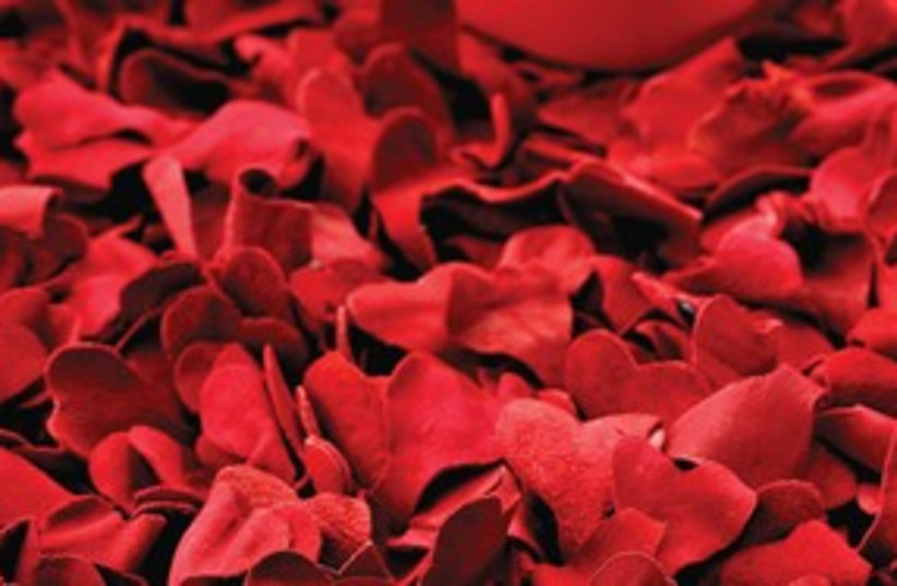 Red rose pedals 311 (photo credit: Courtesy)