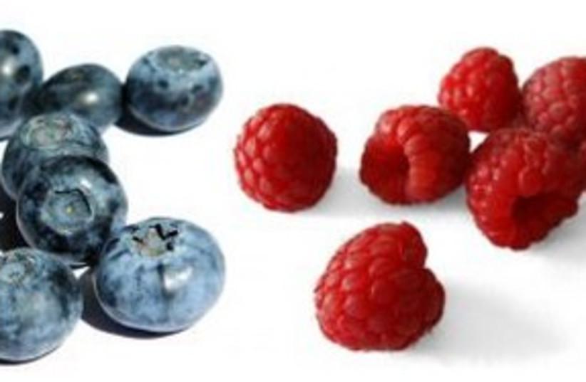Berries (photo credit: courtesy)