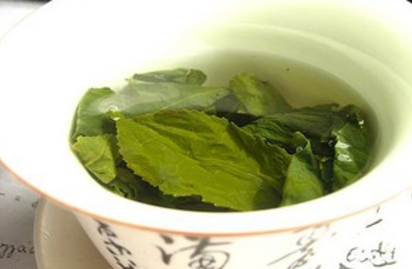 Green tea (photo credit: courtesy)
