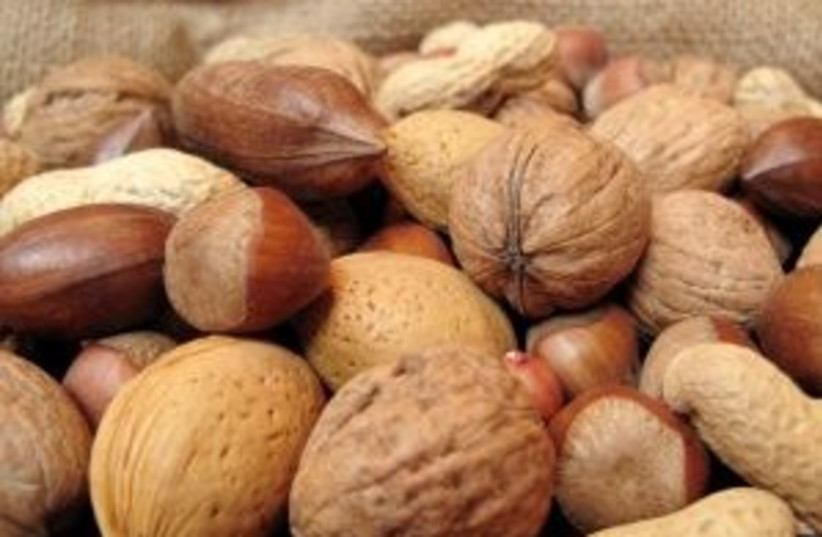 Nuts (photo credit: Courtesy)