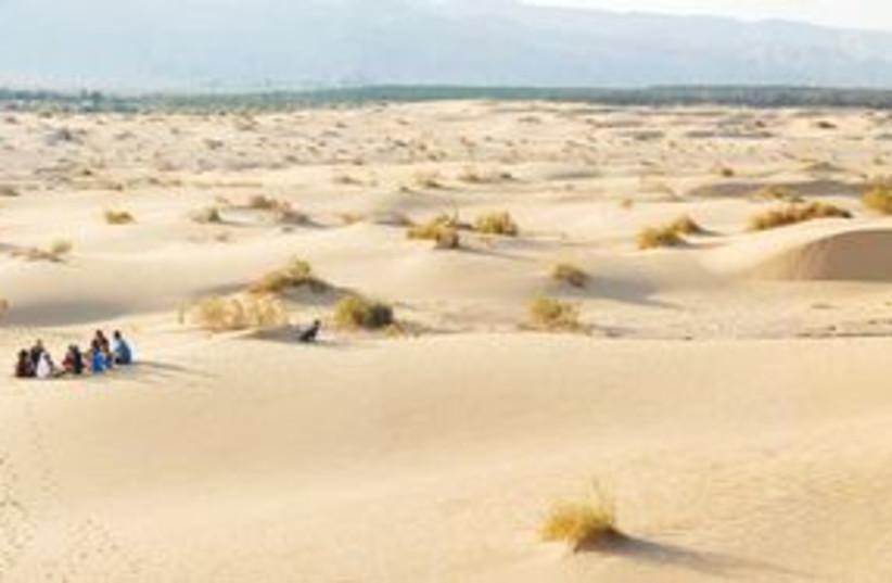 Samar sand dunes, north of Eilat 311 (photo credit: Uri Shanan)