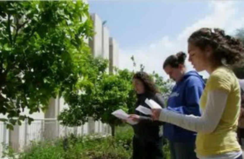 Birkat ha Ilan (blessing trees)_311 (photo credit: Mordechai I. Twersky)