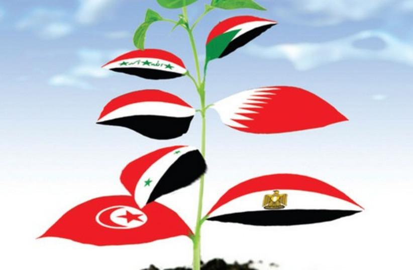 arab spring_521 (do not publish again) (photo credit: AVI KATZ)