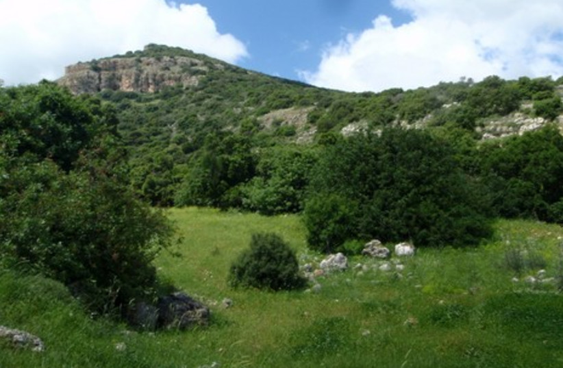 Kibbutz Yagur and Carmel Mountains